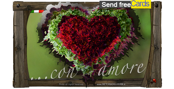 Send FREE Cards